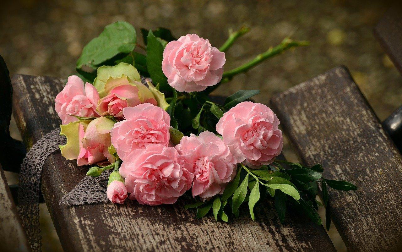 bouquet, cloves, roses